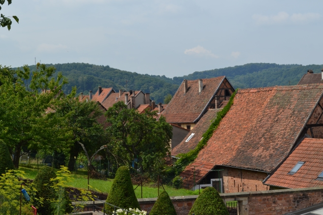 Rooftops of Bitche, France