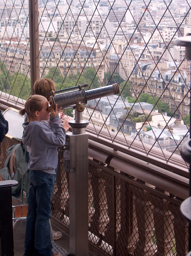 Rooftops of Paris from the Eiffel Tower, 2008