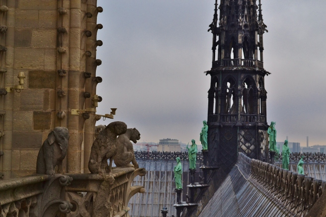 A perch in the bell towers of Notre Dame Cathedral, Paris