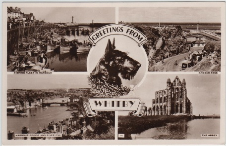 whitby%20multiview